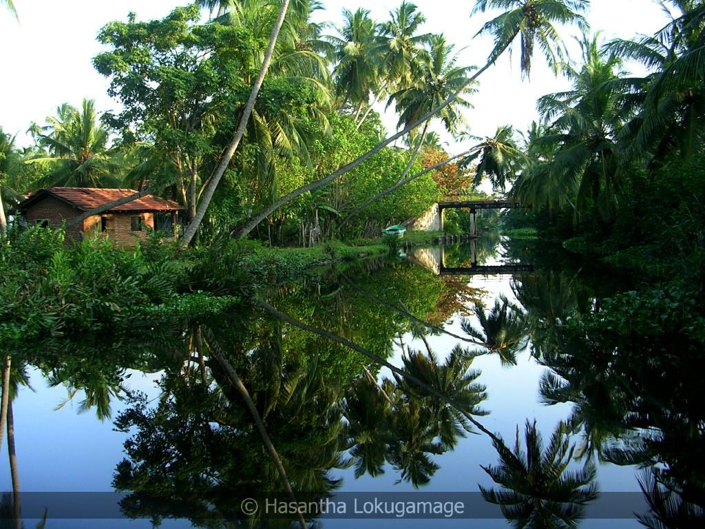 Picturesque Hamilton Canal connecting Negombo lagoon