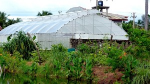 Polytunnel greenhouse at Jetwing Beach agricultural park