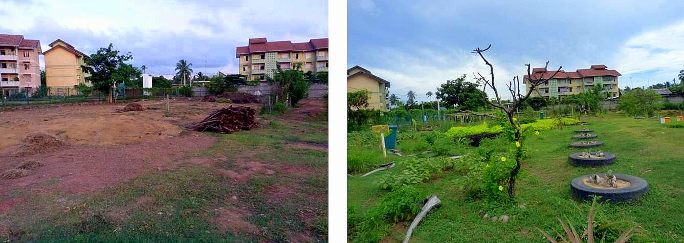 Transformation of bare land into agricultural park